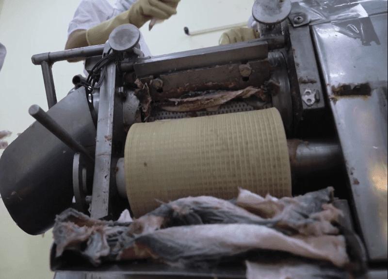 Xương và da cá được loại bỏ rất nhanh chóng và sạch sẽ
